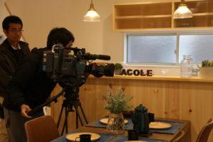 サラダホーム 新モデルハウスがオープン 取材