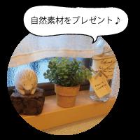 sizen_present
