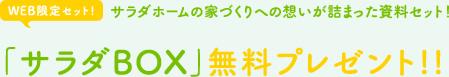 「サラダBOX」無料プレゼント!!